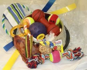 Dog Treat Hamper Stainless Steel Lrg > The Large Dog Treat Hamper is fabulously presented in a Stainless Steel Dog Bowl and is wrapped and ready to present. We can post it directly to a friend or new Puppy owner as a treat for a new Puppy.