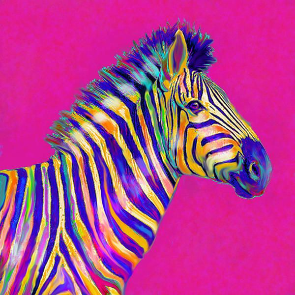 991 Best Zebra Art Images On Pinterest