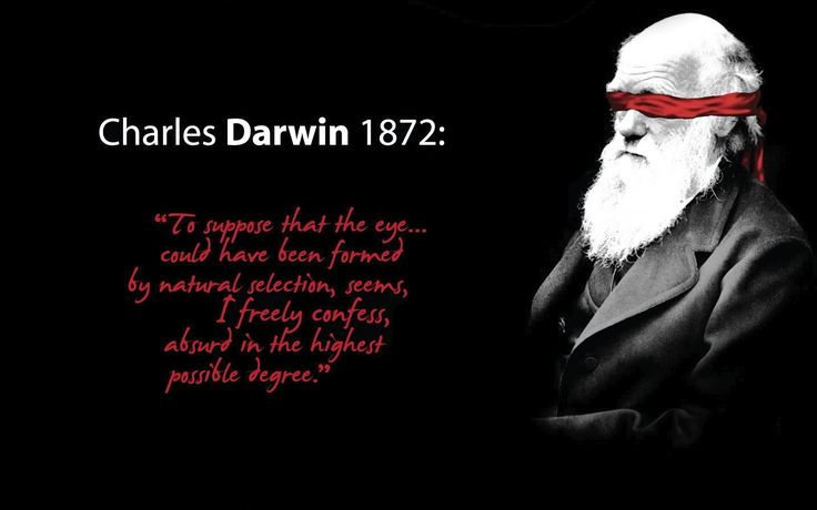 """9 Scientific Facts Prove the """"Theory of Evolution"""" is False   Humans Are Free"""