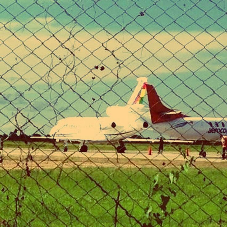 Según Quintana, no usan el avión presidencial en la campaña, entonces, ¿qué hacia el avión presidencial en Trinidad ayer?