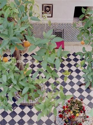 cortile+design+verde