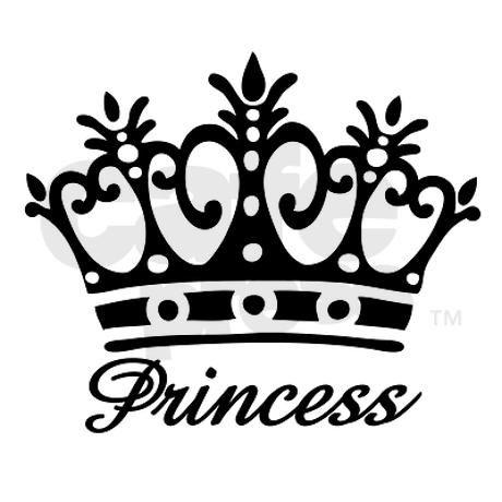 Bloggen is wel iets voor prinsesjes toch?