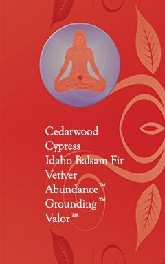 Young Living Essential Oils: Balance the 1st Root Chakra - Represents our foundation and feeling of being grounded.