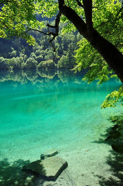 BeautifulFavorite Places, Green, Peace, Beautiful, Lakes, Cotton Candies, Danishes, Aqua, Nature Pools