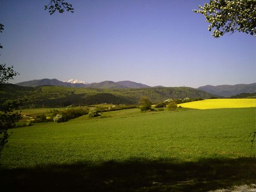 Österreich Niederösterreich Enzesfeld-Lindabrunn  Schneebergblick
