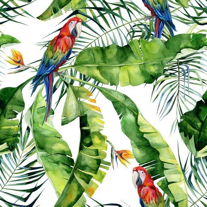 Картинки в тропическом стиле