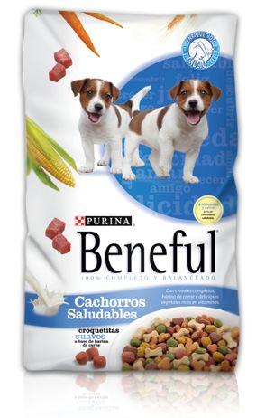 """Comida Para Perros De La Marca Beneful. """"Una alimentación sana para tu perro con los productos de Beneful""""     Si vas a un centro comercial vas a encontrar múltiples marcas, pero no sabes cuál te conviene comprar, pero este es el caso de Beneful, un laboratorio Profeco analizo 35 marcas de alimentos seco para cachorros y quedo demostrados que cumple con el balance de alimentación sana para un cachorro.     Si quieres que tu perro tenga....  Comida Para Perros Beneful. Para ver el artículo…"""
