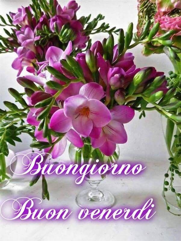 86 best buon venerdi images on pinterest happy weekend for Buon weekend immagini simpatiche