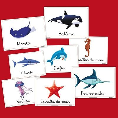 Animales Marinos. Vocabulario infantil