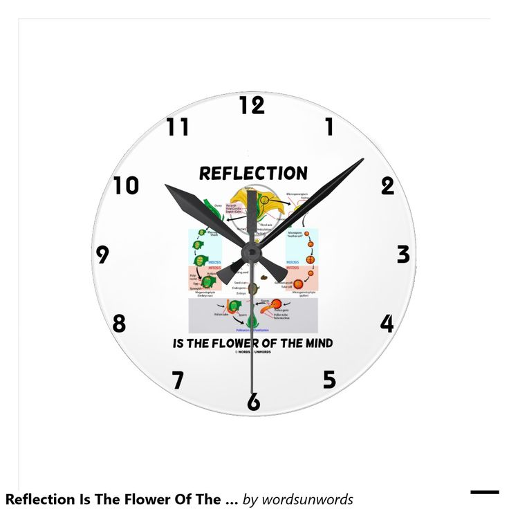 "Reflection Is The Flower Of The Mind (Angiosperm) Round Clocks #reflection #flowerofthemind #angiosperm #flower #geek #biology #biologist #botany #botanist #alternationofgenerations #saying #advice #wordsandunwords Here's a clocke featuring alternation of generations in an angiosperm (flower) along with the saying ""Reflection Is The Flower Of The Mind""."