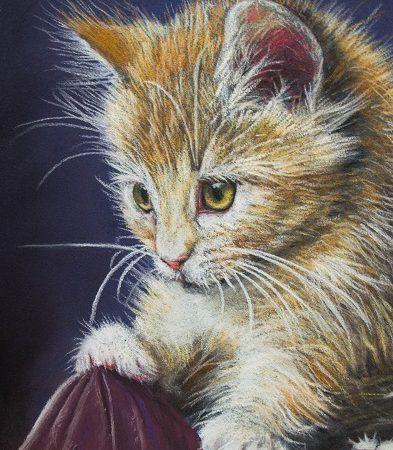 Kitten | Pastellum