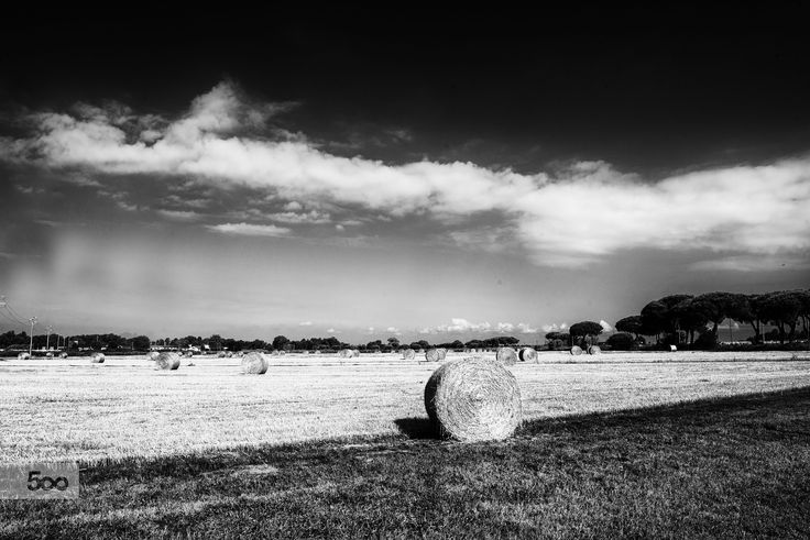 summer and hay bales by marco branchi on 500px