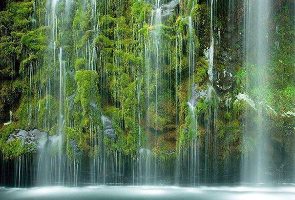 Мосбрай — уникальный водопад. Вода льётся каскадом вниз по мшистым стенам каньона в реку Сакраменто, Калифорния.