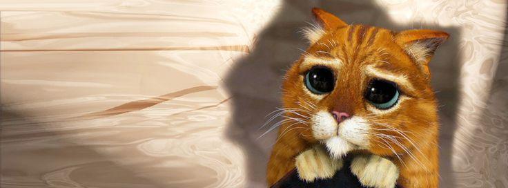 Nueva #Portada Para Tu #Facebook   Gato Con Botas    http://crearportadas.com/facebook-gratis-online/gato-con-botas/  #FacebookCover #CoverPhoto #fbcovers