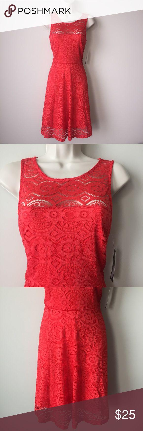 Thalia Sodi orange lace dress New with tags. Us size small. Color: Orange Thalia Sodi Dresses Midi