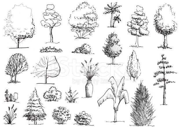 Mão desenhada de árvores e arbustos preto e branco elevação