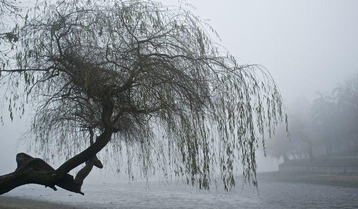 winter Bucharest & cycling