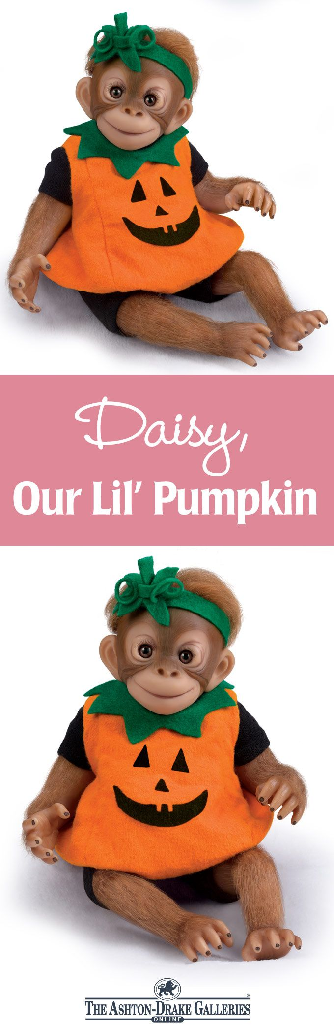 There's a Daisy in the pumpkin patch! This lifelike monkey doll by Master Doll Artist Amy Ferreria arrives in a plush pumpkin costume with green felt collar and matching headband. From her big brown eyes to her hand-applied hair, Daisy is a real treat! Shop Now!