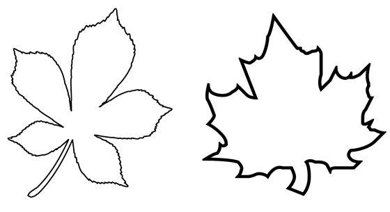 Картинки по запросу шаблоны листьев для вырезания из ...