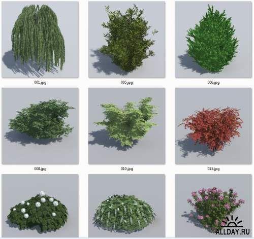HQ Деревья и кустарники для Artlantis 5!
