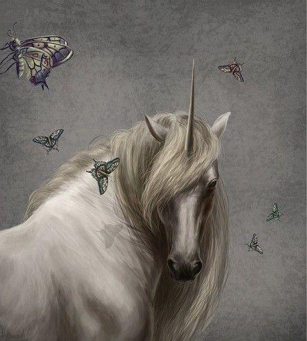 La Licorne aux Papillons