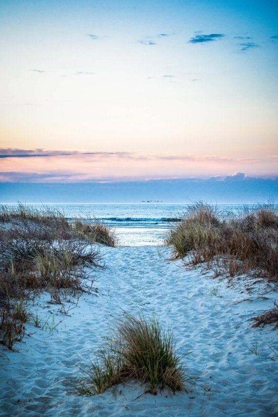 Sunrise Beach Path on Pawleys Island, South Carolina Instant Digital Download Beach Nature Photography Sand and Sea