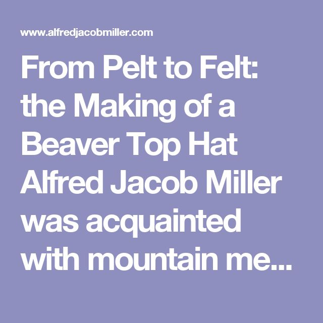 """From Pelt to Felt: the Making of a Beaver Top Hat Alfred Jacob Miller was acquainted with mountain men who endured the danger and discomfort of the Rocky Mountain West in search of beaver to supply the demands of hat manufacturers. In the heyday of the beaver trade, thousands of pelts per year were turned into fine felt for creating hats worn by the social elite. Beaver """"plews"""" straight from the Rockies were rough, greasy skins, covered with coarse, brown guard hairs. Underneath, however…"""