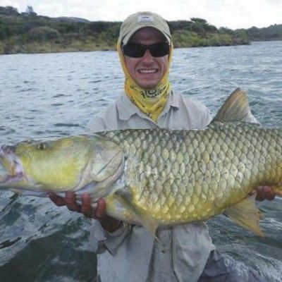 Monster yellowfish on the fly.