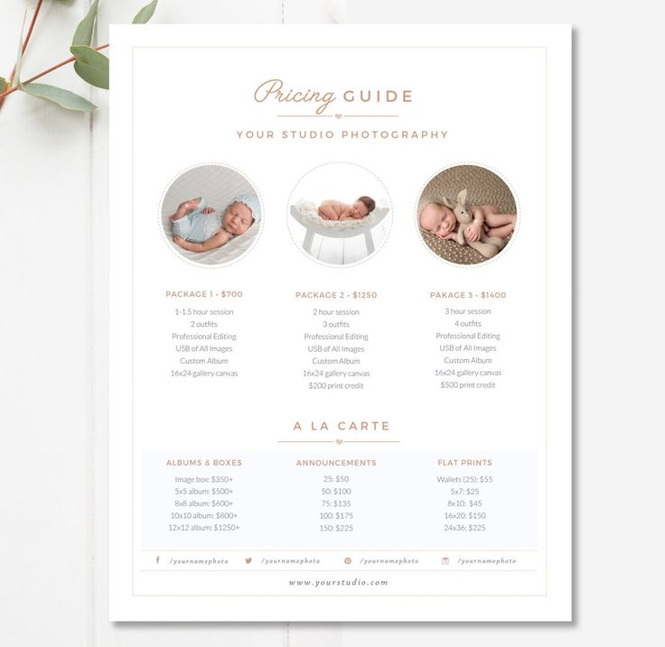 Newborn pricing template photography pricing guide