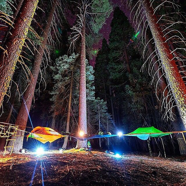 Elevated c&ing with @tentsile tree tents Photo @lonebuffalophoto #wildernessculture #Earthday & 24 best Tentsile images on Pinterest | Tree tent Stingrays and ...