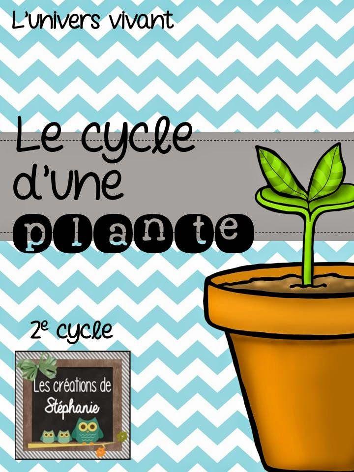 Les créations de Stéphanie: { Projet de sciences } Le cycle d'une plante…