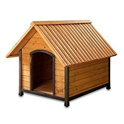What Are The Best Indoor and Outdoor Dog Houses To Buy This Year?