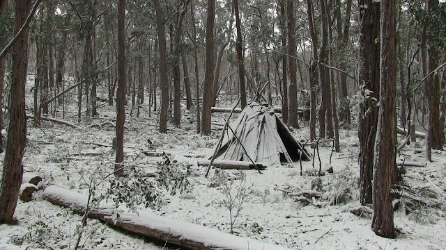 A Woodsrunner's Diary: My Home In Winter. New England NSW.
