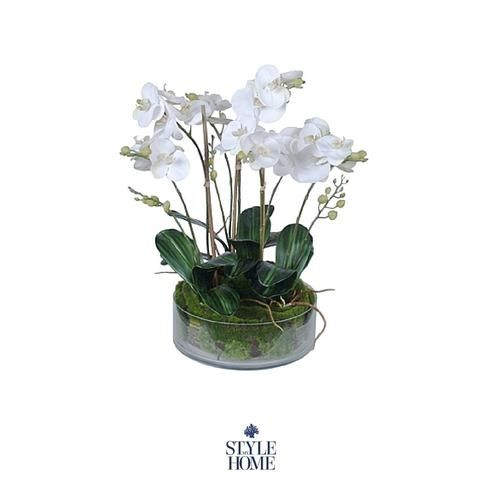 Hamptons Style Decor Faux Orchid from Style My Home Australia