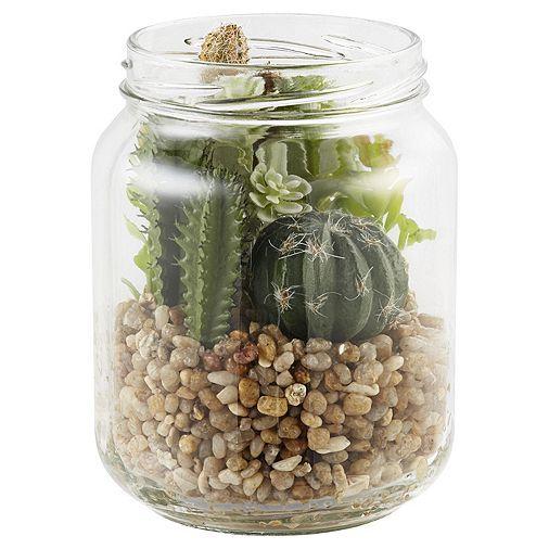 Tesco direct: Cactus in Glass Jar