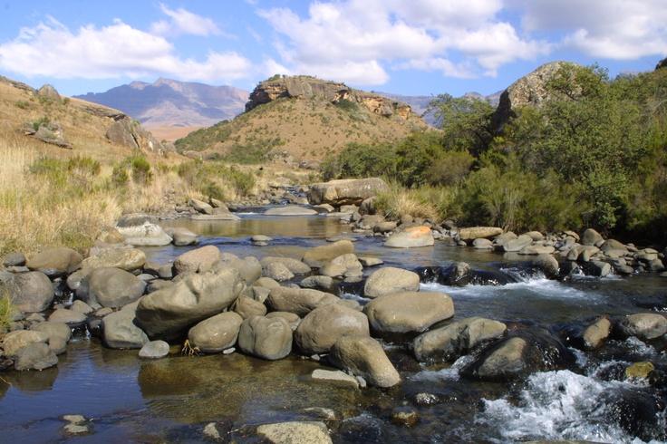 The majestic Drakensberg http://www.n3gateway.com/the-n3-gateway-route/ezemvelo-kzn-wildlife-giants-castle-resort.htm
