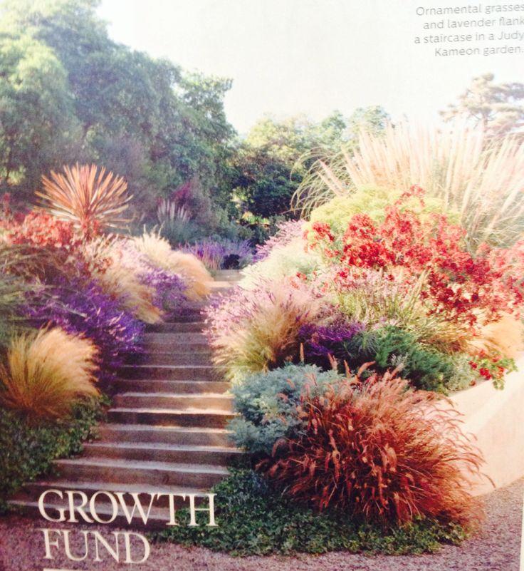 Ornamental grasses the great outdoors pinterest for Ornamental grasses garden ideas