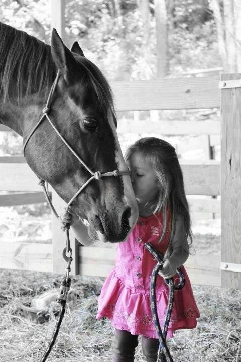 a little girl and her horse / pink / splash of color photography