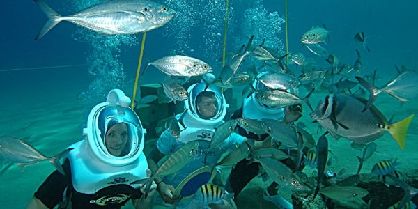 7 Water Activities in Cabo San Lucas You Need to Try: Sea Trek - If you would like to discover the extraordinary underwater world of the Sea of Cortez, try this!  With an special helmet powered with oxygen you'll walk underwater. For the full list of activities click on the photo. #SeaTrek #LosCabos #SeaofCortez
