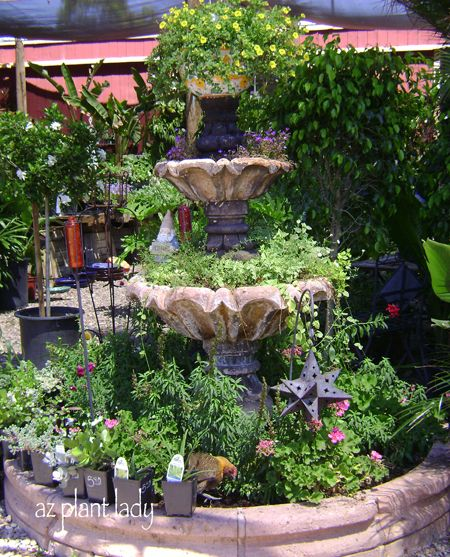 A Fountain Transformed Into A Planter Birdsandbloomsblog