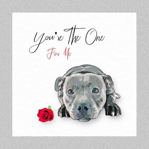 Dog Lover Gift Single Line Floral Pet Art Print Staffie Pet Portrait Staffordshire Bull Terrier Print Wall Art Dog Portrait