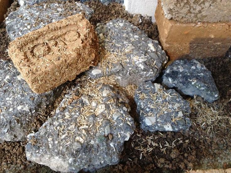 orto brick di argilla e semi Tommaso Mancini
