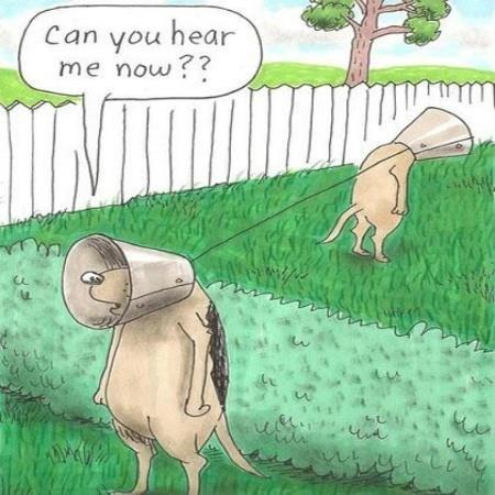 can you hear me now?? | Cartoon jokes, Funny cartoons ...
