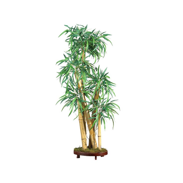 nearly natural Silk Chinese Bamboo Plant, Multicolor