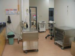 Dakota Veterinary Hospital - Veterinarian In Winnipeg, Manitoba Canada :: Home
