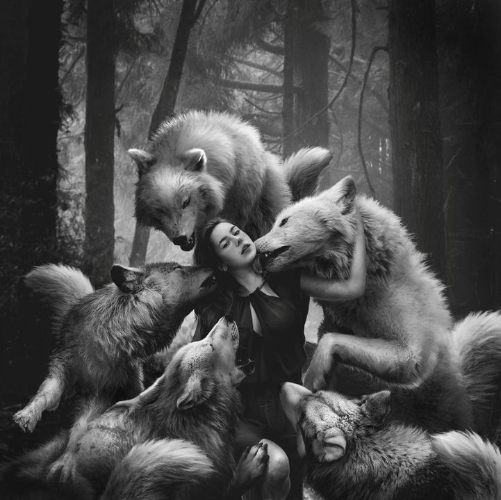 """""""The Wild still lingered in him and the Wolf in him merely slept."""" ~Jack London"""