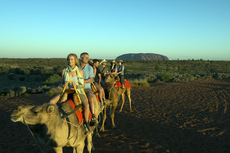 See the NT on the back of Camels