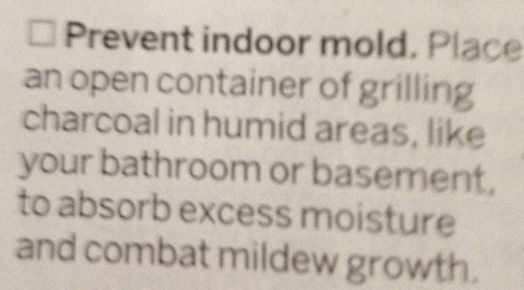 Prevent mold in bathroom, basement or other damp areas