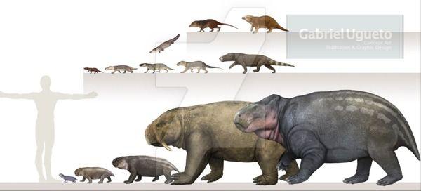Size Of Some Therapsids By Kana Hebi Animals Prehistoric