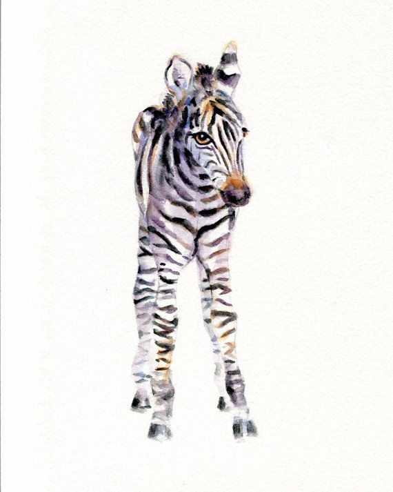 Available 8x10 or 11x14 Baby Zebra Print from Original Watercolor by Marysflowergarden, $12.00 jungle nursery